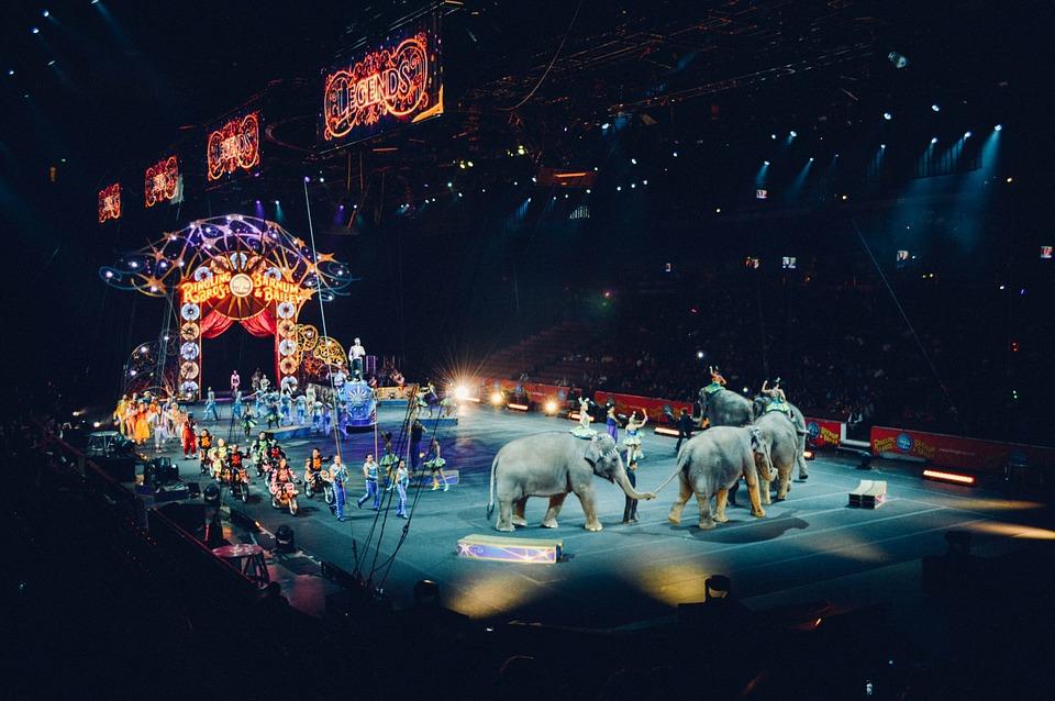 circus-828680_960_720.jpg